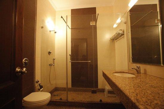 Mahalakshmi Palace Hotel : Washroom
