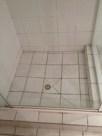 Silverton Holiday Apartments: the grim shower scene. Use the bath...