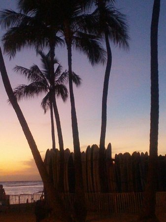 Waikiki Beachside Hostel: sunset