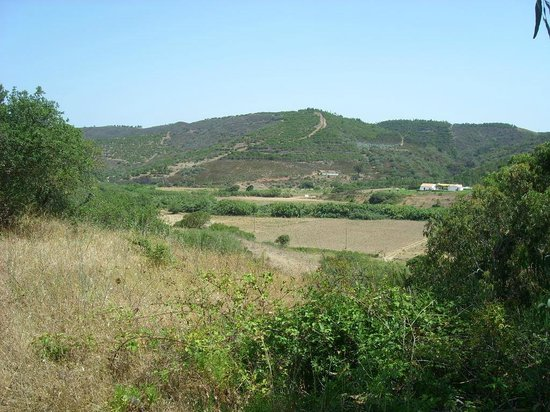 Monte do Sapeiro: the country side