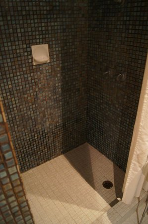 Kings Perth Hotel: Prysznic w łazience.