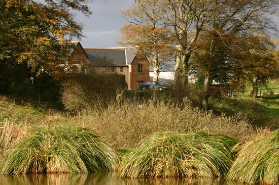Newbarn Farm Cottages & Angling Centre: Fields of peace