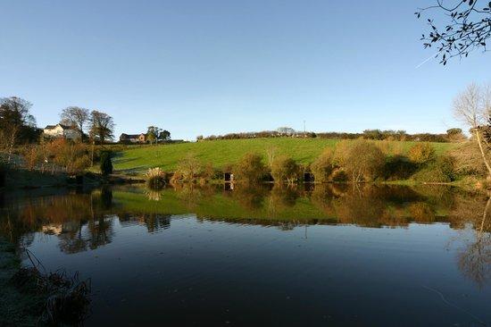 Newbarn Farm Cottages & Angling Centre: 42 Acres to Roam