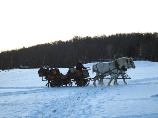 The Mountain Top Inn & Resort : Sleigh Rides on the Property