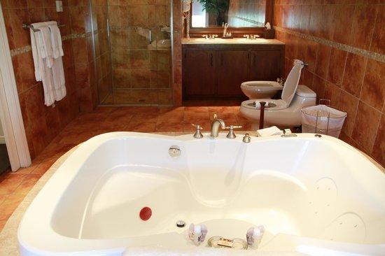 호텔 쿠투마 사진