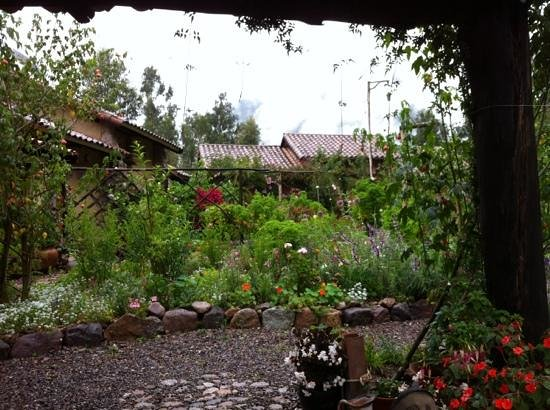 Casa Colibri eco-Lodge: View of garden