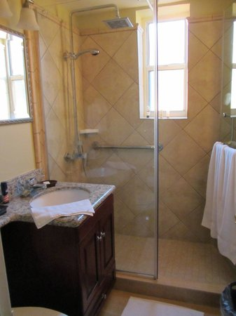 Avenue Plaza Resort: bathroom - no tub, but not a closet either