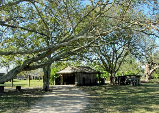 Laura: A Creole Plantation: grounds