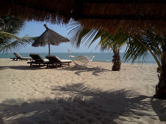 Lamantin Beach Resort & Spa: Vue transats plage
