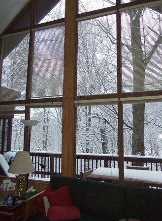 Berkeley Springs Cottage Rentals: View from great room, Treetop