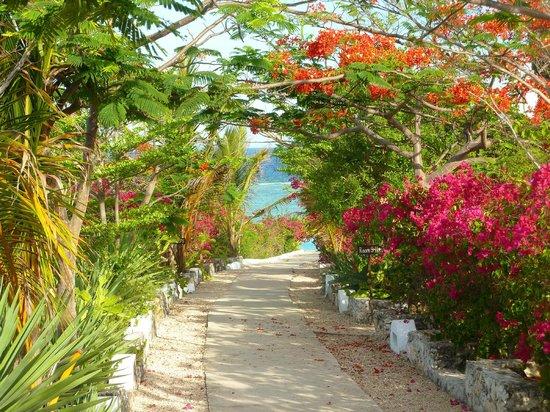 Kasha Boutique Luxury Hotel: Allée vers les villas et la piscine