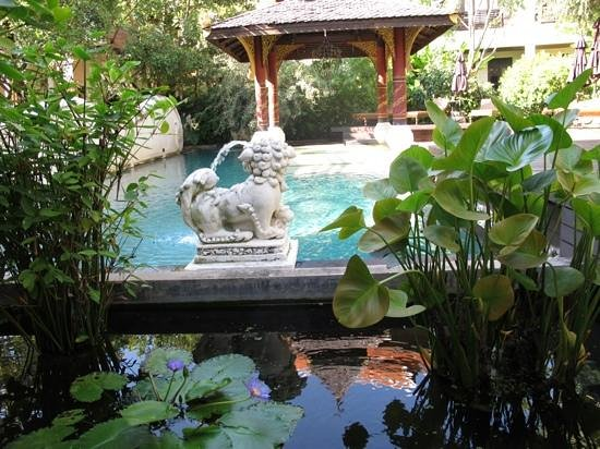 Puripunn Baby Grand Boutique Hotel: pool and gardens