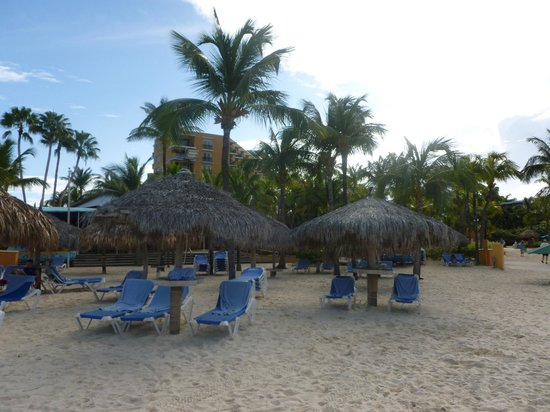 Hilton Aruba Caribbean Resort & Casino: Beach