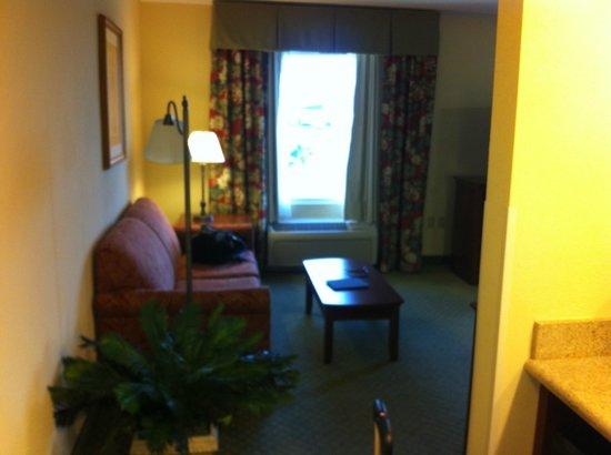 邁爾斯堡漢普頓套房飯店 - 殖民地大道照片