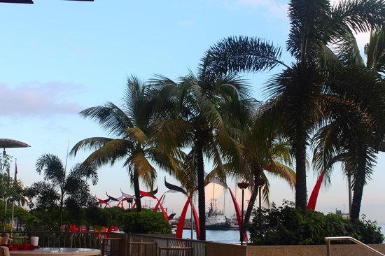 Hyatt Regency Trinidad: view from terrace