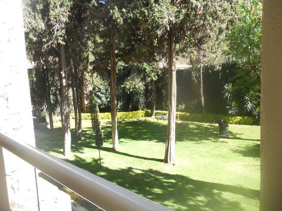 Camino Real Guanajuato: Jardín dos