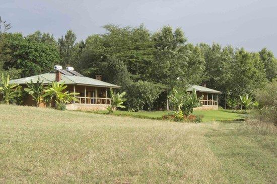 Ngorongoro Farm House, Tanganyika Wilderness Camps: Duplex Rooms 
