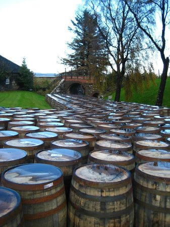 Dornoch Castle Hotel : Casks as far as you can see