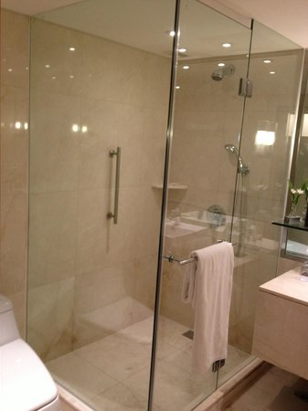 Holiday Inn Bangkok: bathroom2