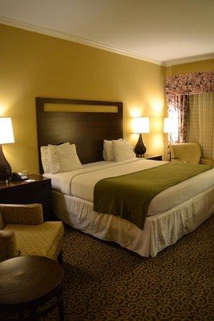 Holiday Inn Express Savannah-Historic District: Room