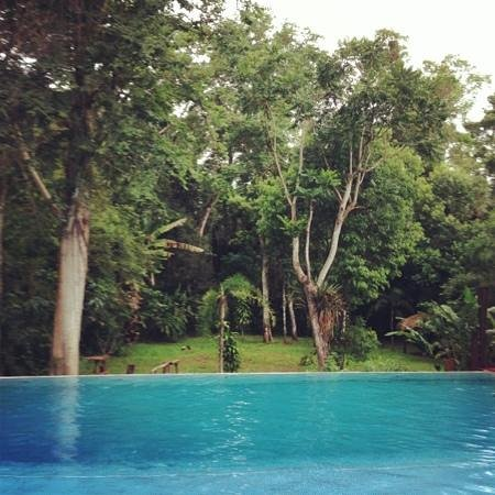 La Cantera Jungle Lodge: paradiso dentro la foresta