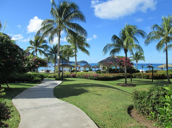 Sandals Grande St. Lucian Spa & Beach Resort: View when we walk from our roomt o the beach