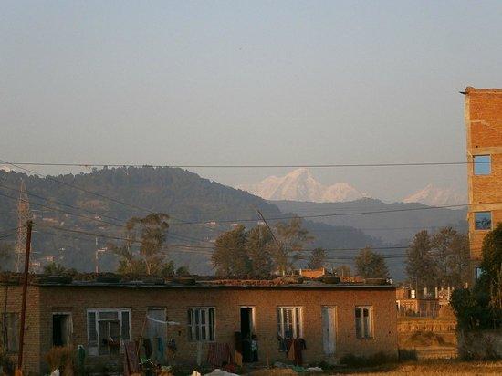 Catsun Guest House: La vue depuis la terrasse