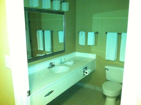 ماجنوسون هوتل واشنطن: Bathroom 