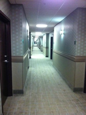 BEST WESTERN PLUS Fort Lauderdale Airport South Inn & Suites: Hallway