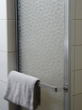 Tropicana Inn: shower with dirty towel