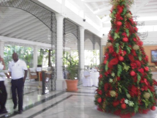 Grand Bahia Principe El Portillo: el arbol de navidad del hall