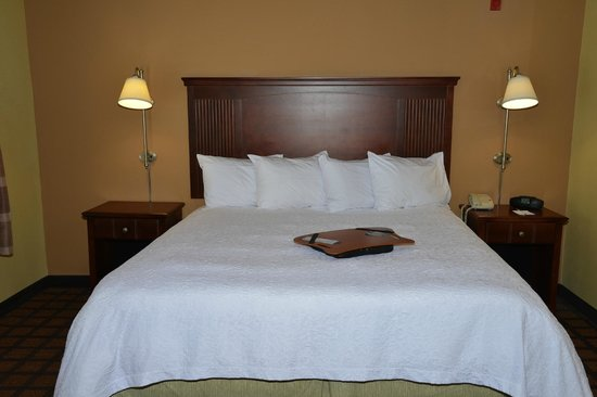 Hampton Inn and Suites Lake City: King Bed
