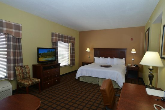 Hampton Inn and Suites Lake City: King Studio