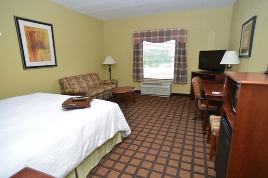 Hampton Inn and Suites Lake City: Standard King Study