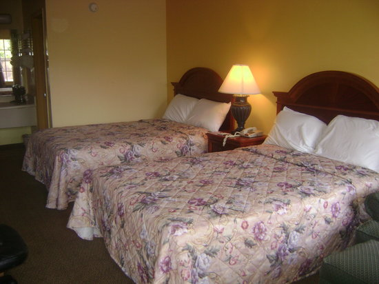 Americas Best Value Inn Tuscaloosa: Double Beds