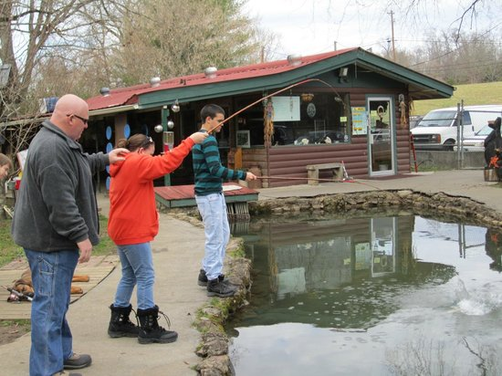 Fishing foto di english mountain trout farm grill sevierville tripadvisor - Trout farming business family mountains ...