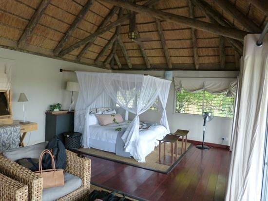 Savute Safari Lodge: room with a view