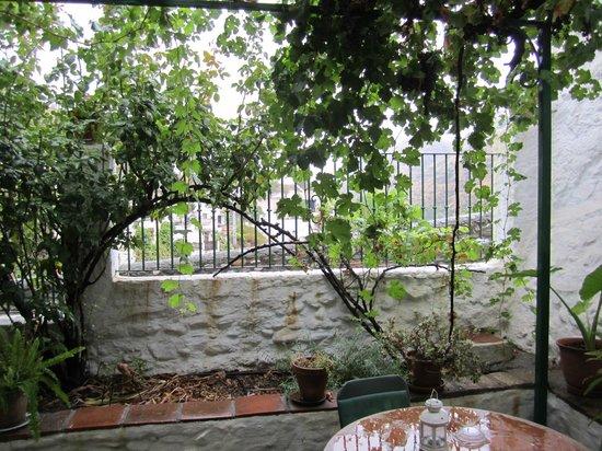 Cuevas El Abanico: patio