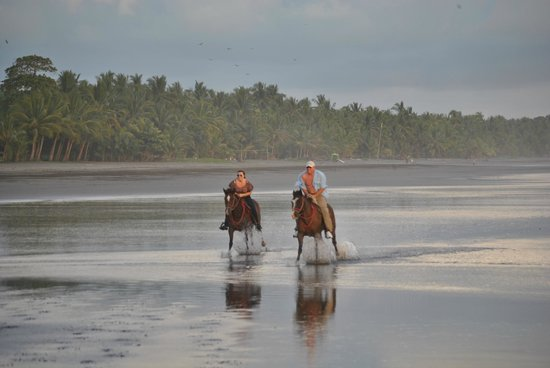 The Riding Adventure: This is a real picture from Dec 23rd 2012. My daughter and I racing on Esterillos Beach.