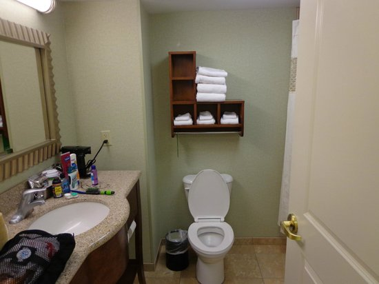 Hampton Inn & Suites Savannah/Midtown: Bathroom