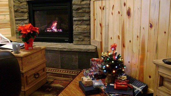StoneBrook Resort: Fire place and mini-Christmas tree