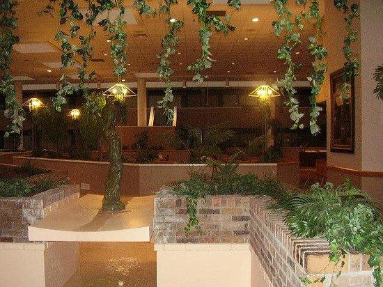 Ramada Owensboro : Lobby