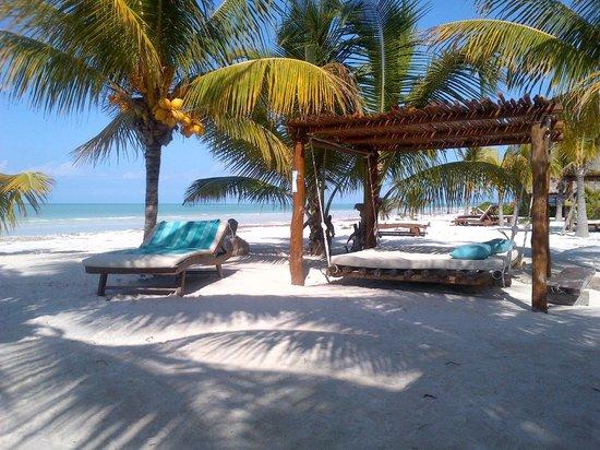Colazione sulla spiaggia picture of holbox hotel mawimbi for Villas hm paraiso del mar holbox tripadvisor