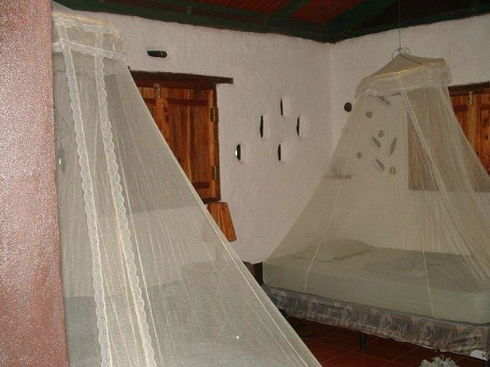 Finca Mystica: Our cozy, well-kept room