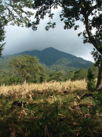 Volcan Maderas in the backyard of Finca Mystica