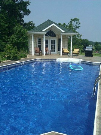 Southern Grace Bed and Breakfast: Pool area