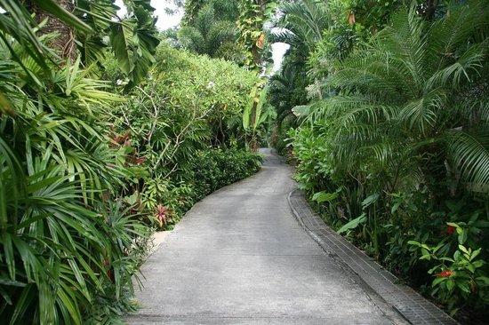 The Pavilions Phuket: Laneway to Ocean View Villas