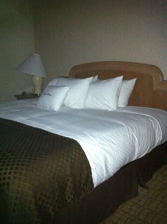 Doubletree Hotel Tulsa-Downtown: The furnishings are outdated including that spice jar lamp with dated shade.