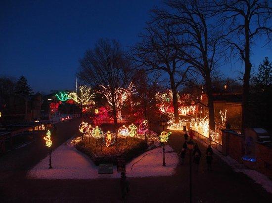 toledo zoo lights before christmas 3 - Toledo Zoo Lights Before Christmas