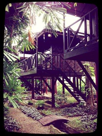 Fruit Tree Lodge : Fruit Tree Bungalows